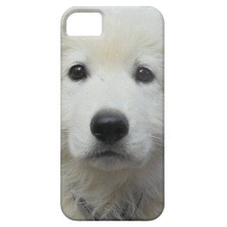 teddy_002.jpg iPhone 5 covers