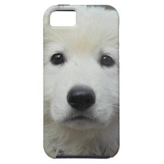 teddy_002.jpg iPhone 5 cases