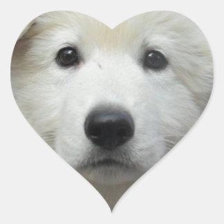 teddy_002 jpg calcomanía corazón