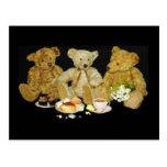 Teddy Bear Blank Poste Card Postcard