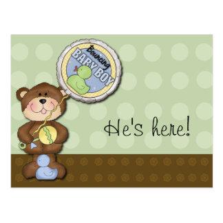 Teddy Bear Boy Brown Green Postcard