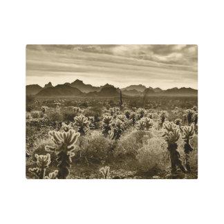 Teddy Bear Cholla Cactus Desert Plant Metal Print