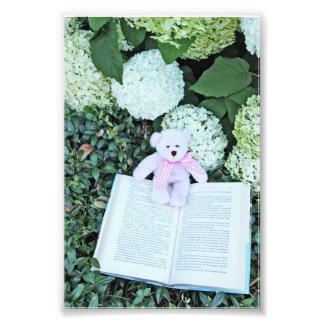 teddy bear , hydrangeas, and book photo print