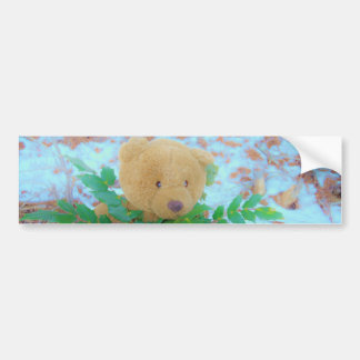 Teddy Bear in the Holly, blue sky Bumper Sticker