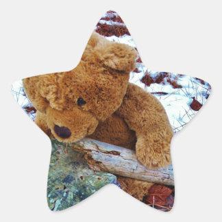 Teddy Bear in the Snow Star Sticker