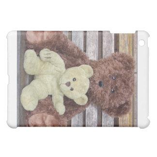 TEDDY BEAR iPAD CASE