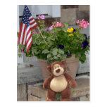 Teddy Bear July 4th Postcard