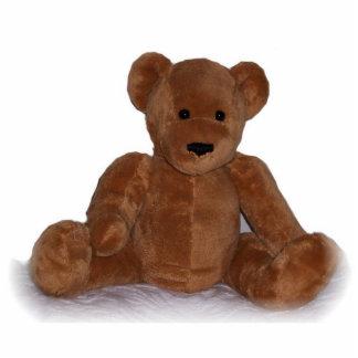 Teddy Bear Standing Photo Sculpture