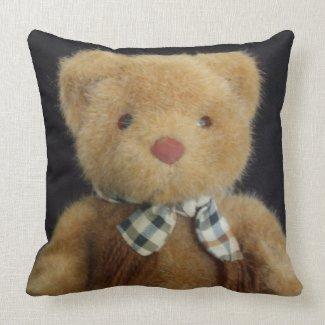 Teddy Bear Throw Pillows