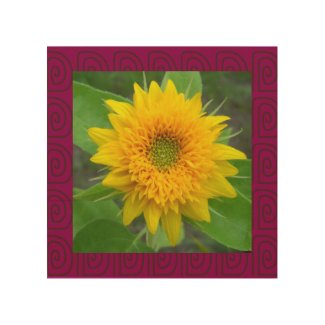 Teddy Bear Sunflower framed in red - wood wall art