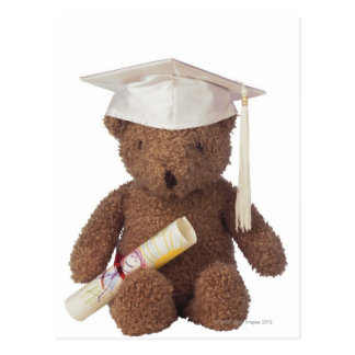 Teddy bear wearing mortarboard and with crayon postcard