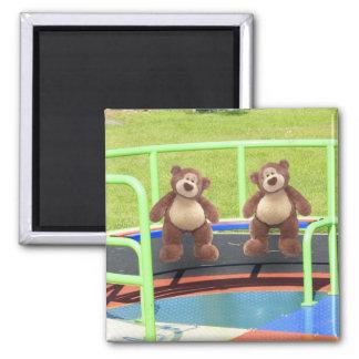 Teddy Bears Playground Fridge Magnet