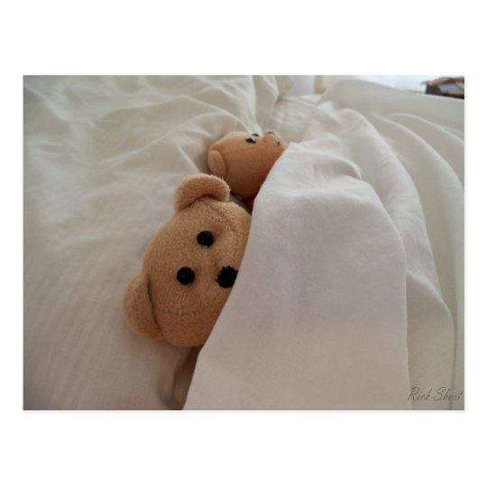 teddy bears sleeping in late post card photo zazzle com