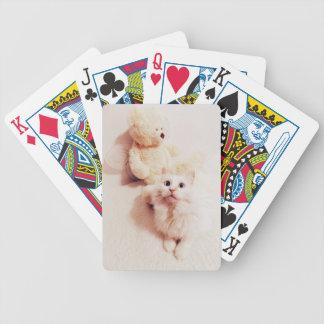 Teddy n white cat Card Deck