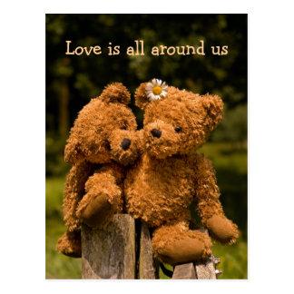 Teddy Postcard