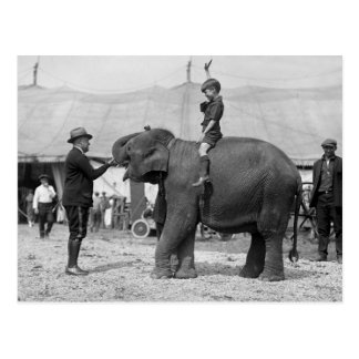 Teddy Roosevelt at the Circus: 1924 Postcard