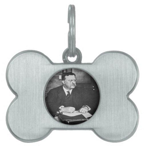 Teddy Roosevelt en el trabajo en 1912 Placas De Mascota