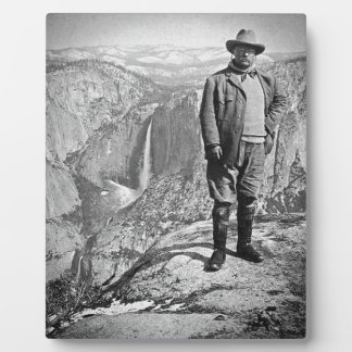 Teddy Roosevelt Glacier Point Yosemite Valley CA Plaque