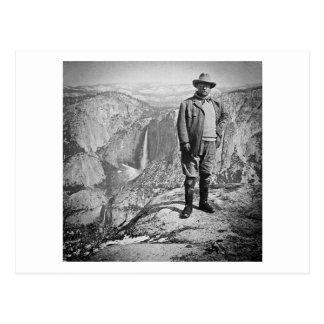 Teddy Roosevelt Glacier Point Yosemite Valley CA Postcard