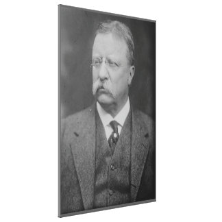 TEDDY ROOSEVELT Portrait by George Grantham Bain Canvas Print
