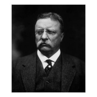Teddy Roosevelt Poster