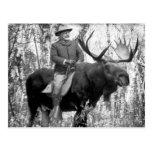 Teddy Roosevelt que monta un alce de Bull