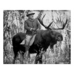 Teddy Roosevelt que monta un alce de Bull Poster