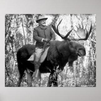 Teddy Roosevelt que monta un alce de Bull Póster