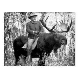 Teddy Roosevelt Riding A Bull Moose Postcard