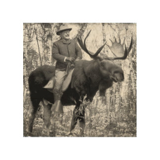 Teddy Roosevelt Riding A Bull Moose Wood Print