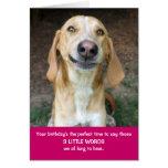 Teddy the Spaz Man 3 Little Words Birthday Card