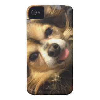 Teddy wants you to be happy! Case-Mate iPhone 4 case