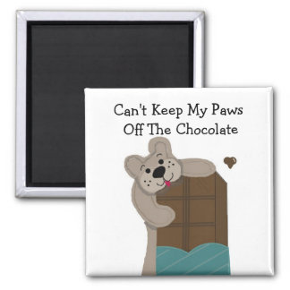 Teddybear Nibbling Chocolate 2 Inch Square Magnet