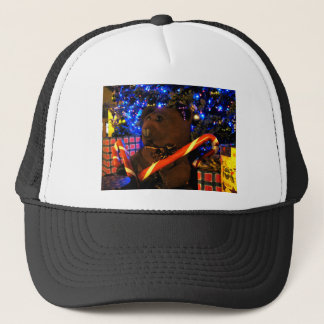 Teddys Christmas I Trucker Hat