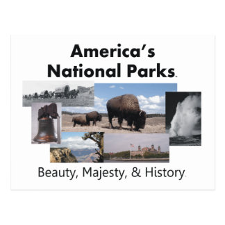 TEE America's National Parks Postcard