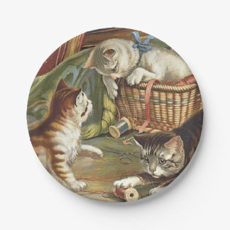 TEE Curious Cat 7 Inch Paper Plate