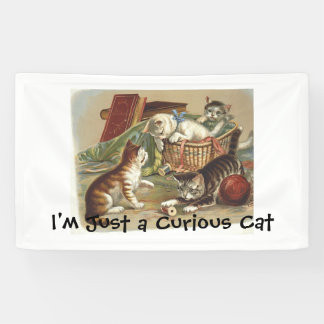 TEE Curious Cat Banner