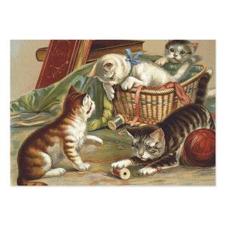 TEE Curious Cat Business Card Templates
