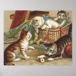 TEE Curious Cat Print