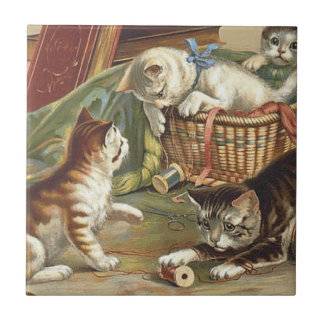 TEE Curious Cat Small Square Tile