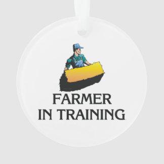 TEE Farmer in Training Ornament