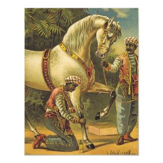 TEE Horse Royalty Card