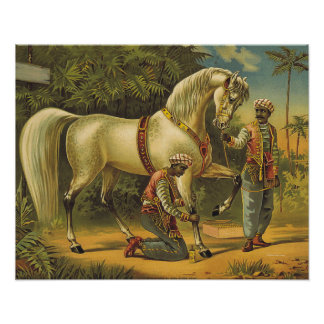 TEE Horse Royalty Print