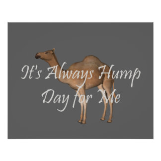 TEE Hump Day Poster