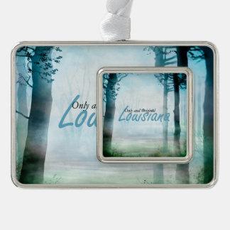 TEE Louisiana Silver Plated Framed Ornament