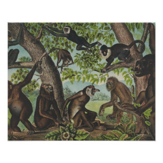 TEE Monkey Mayhem Poster