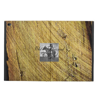 TEE Old Fashioned Cowgirl Powis iPad Air 2 Case