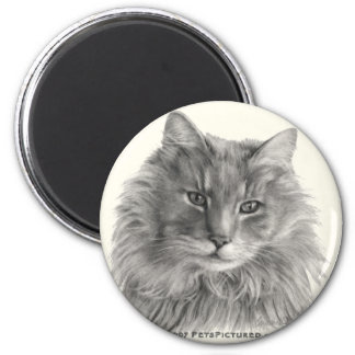 TeeGee, Long-Haired Gray Cat 2 Inch Round Magnet