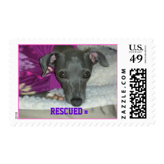 Teeghan Faith - RESCUED = LOVED ! Stamp