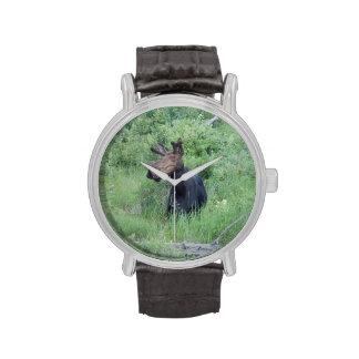 Teen Moose 1 Wrist Watches